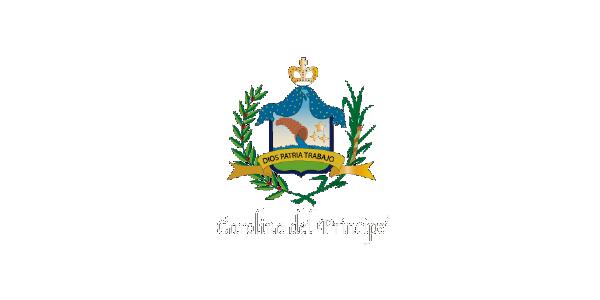 ALCALDÍA CAROLINA DEL PRÍNCIPE